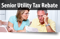 Use the professional tax rebate services and get the most expected benefits